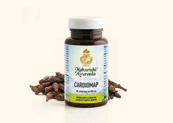 medicina-naturale-ayurveda-2-farmacia-pontiggia